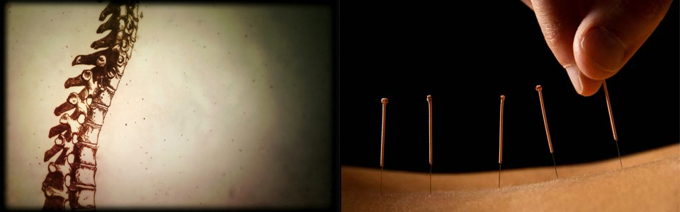 website-pic-spine-acu
